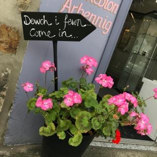 Caernarfon, Gwynedd :: © image copyright Louise Badawi 2017, all rights reserved